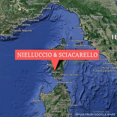 Nielluccio sciacarello Corsica rare wines