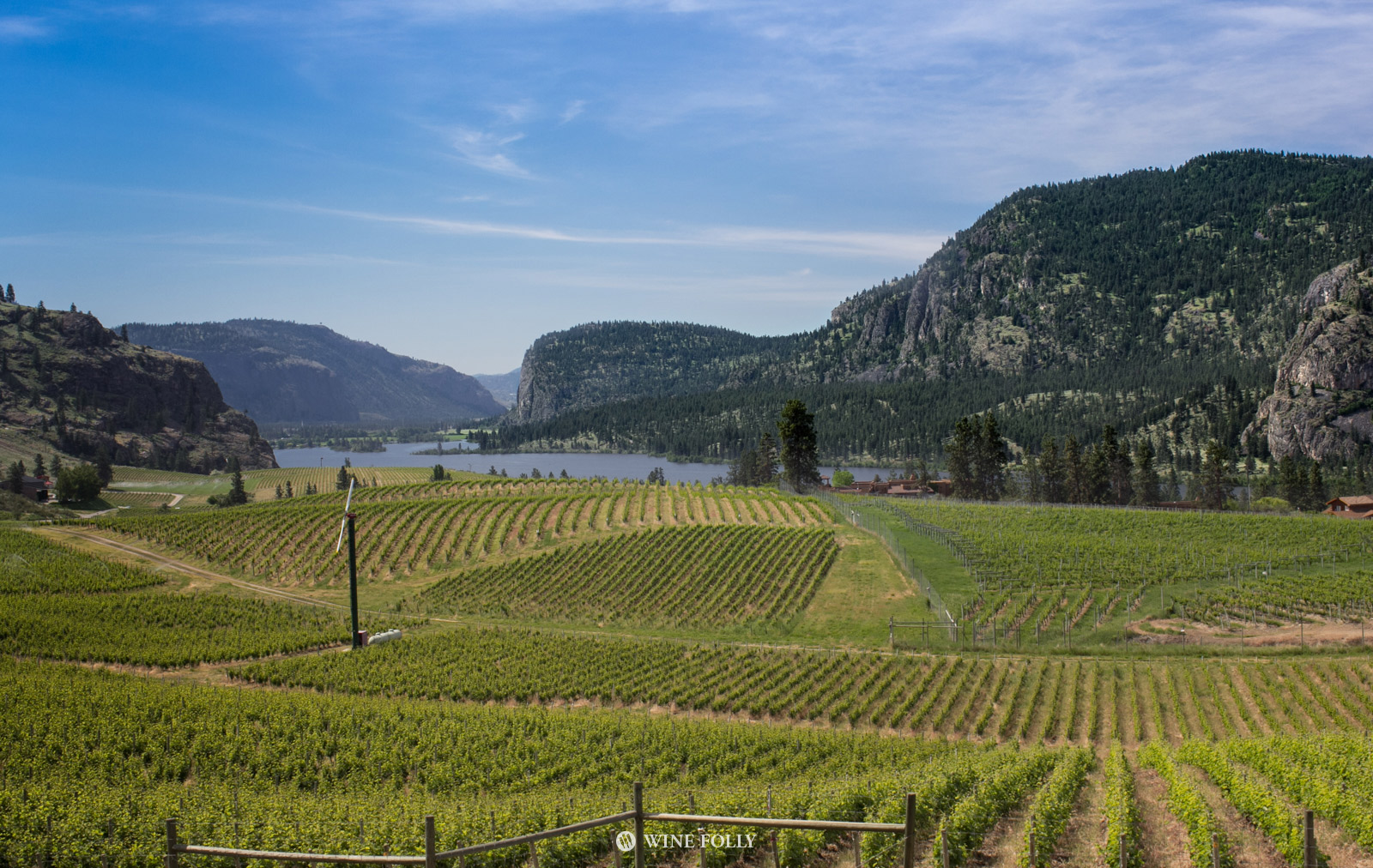 Okanagan Wine Country vineyard view by Wine Folly