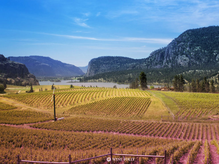 Okanagan Wine Country by Wine Folly