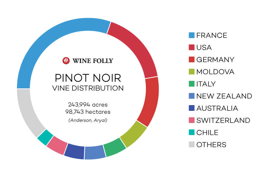 Pinot Noir wine grape acres / hectares worldwide and top countries - infographic by Wine Folly