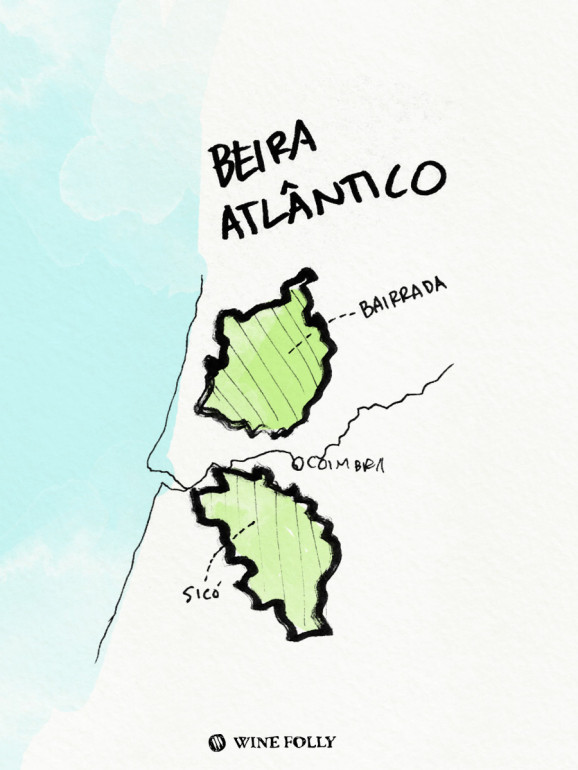 Portugal-illustrations-bairrada-wine-region