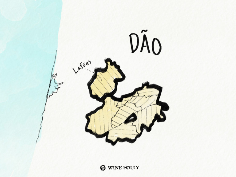 Portugal-illustrations-dao-wine-region