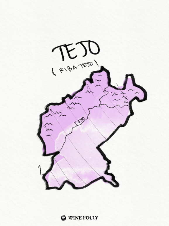 Portugal-illustrations-tejo-wine-region