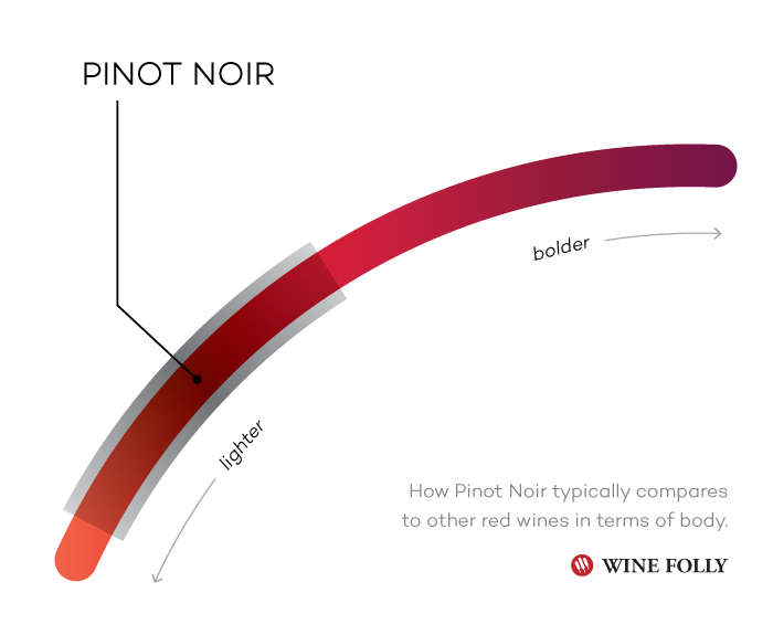 Pinot Noir wine Taste Profile compared to other red wines - Infographic by Wine Folly