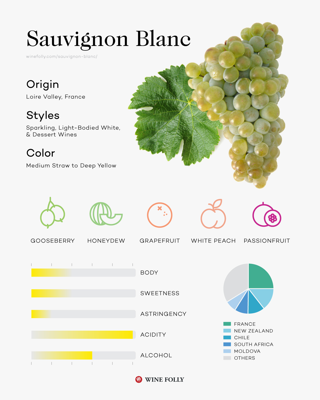 Sauvignon Blanc wine taste profile infographic by Wine Folly 2019