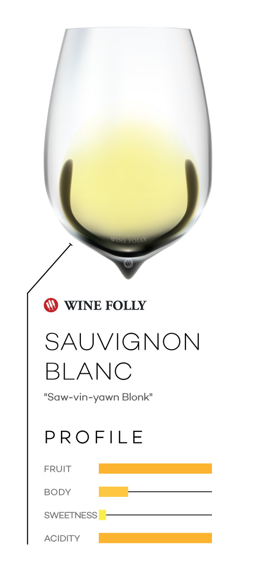 Sauvignon Blanc wine in a glass with taste profile and pronunciation