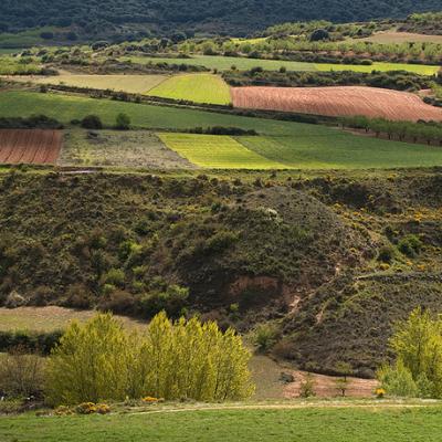 Valle de Jubera