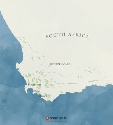South African Sauvignon Blanc wine map by Wine Folly