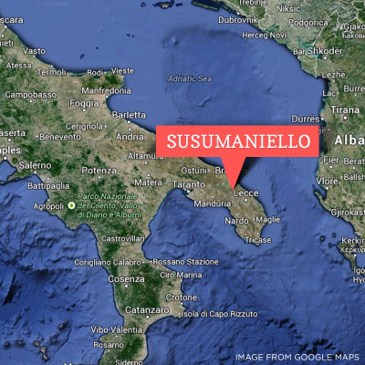 Susumaniello Puglia Esoteric Italian wine grape