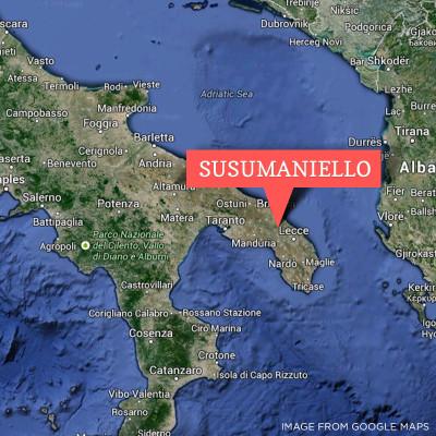 Susumaniello Puglia Esoteric Italian wine grape
