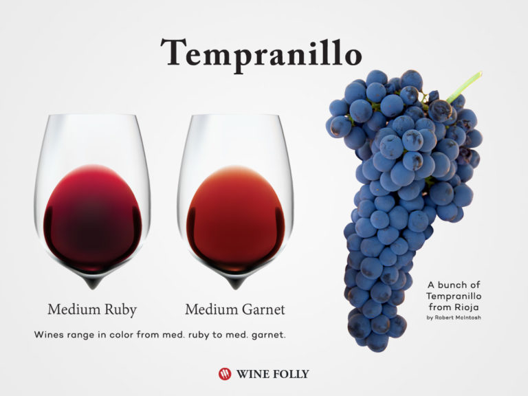 Tempranillo Grapes and wine color in glass by Wine Folly