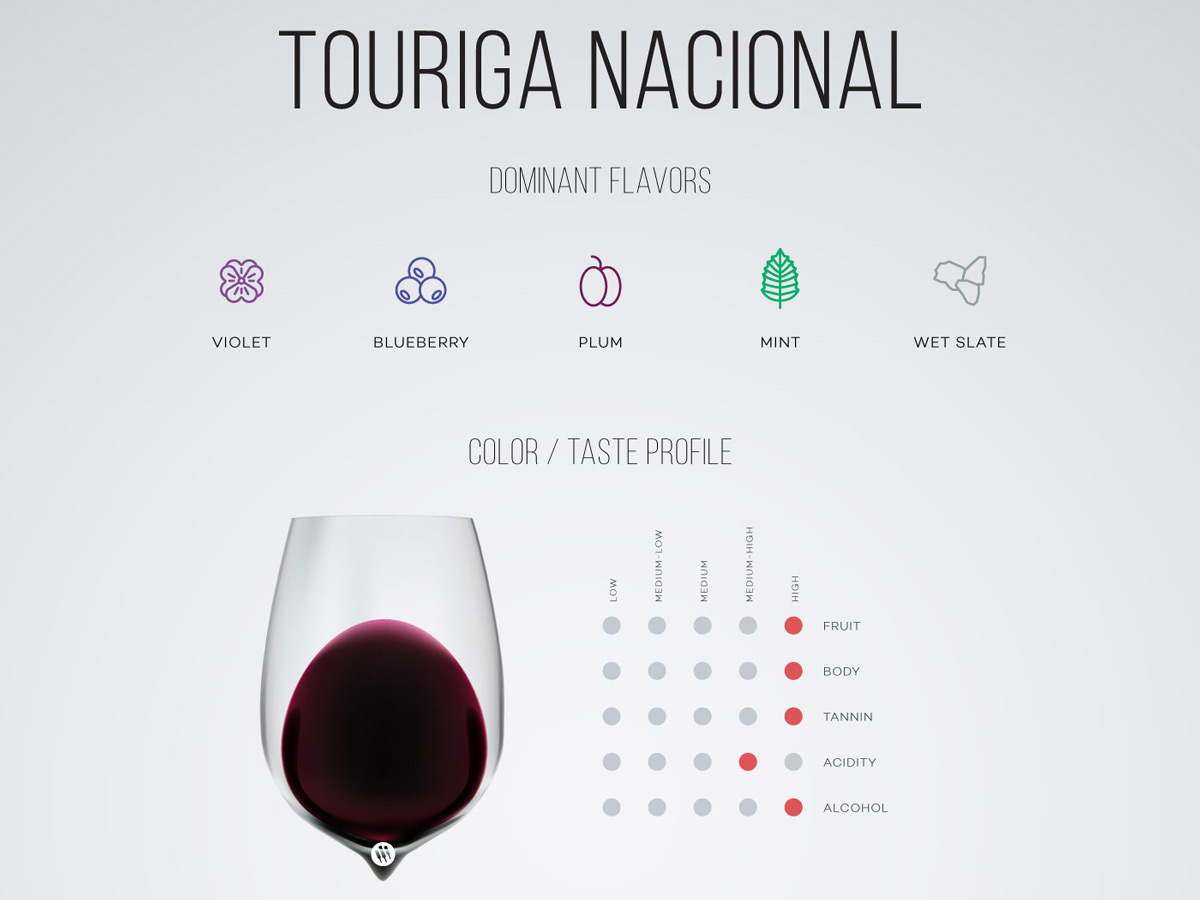 Touriga Nacional wine in a glass, taste profile by Wine Folly