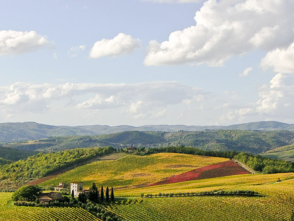 Tuscany-vineyards-by-frederic-poirot
