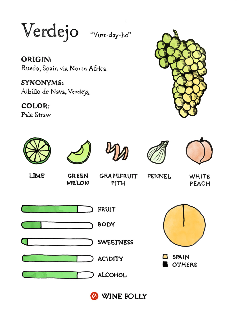 Verdejo Taste Profile illustration by Wine Folly