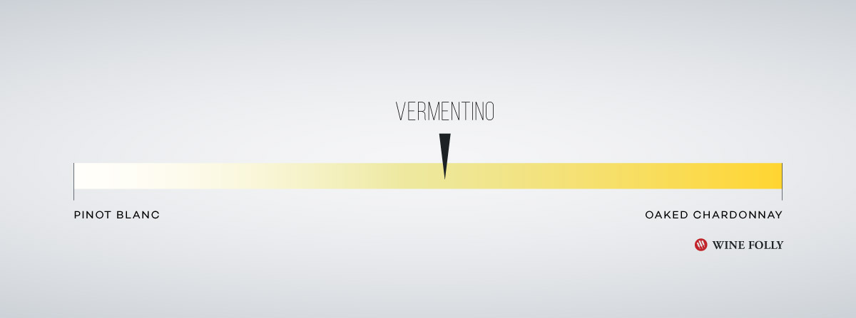 Vermentino wine taste profile by Wine Folly