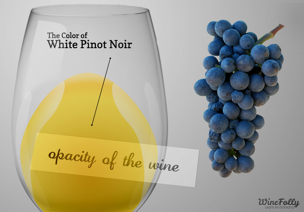 White Pinot Noir Guide