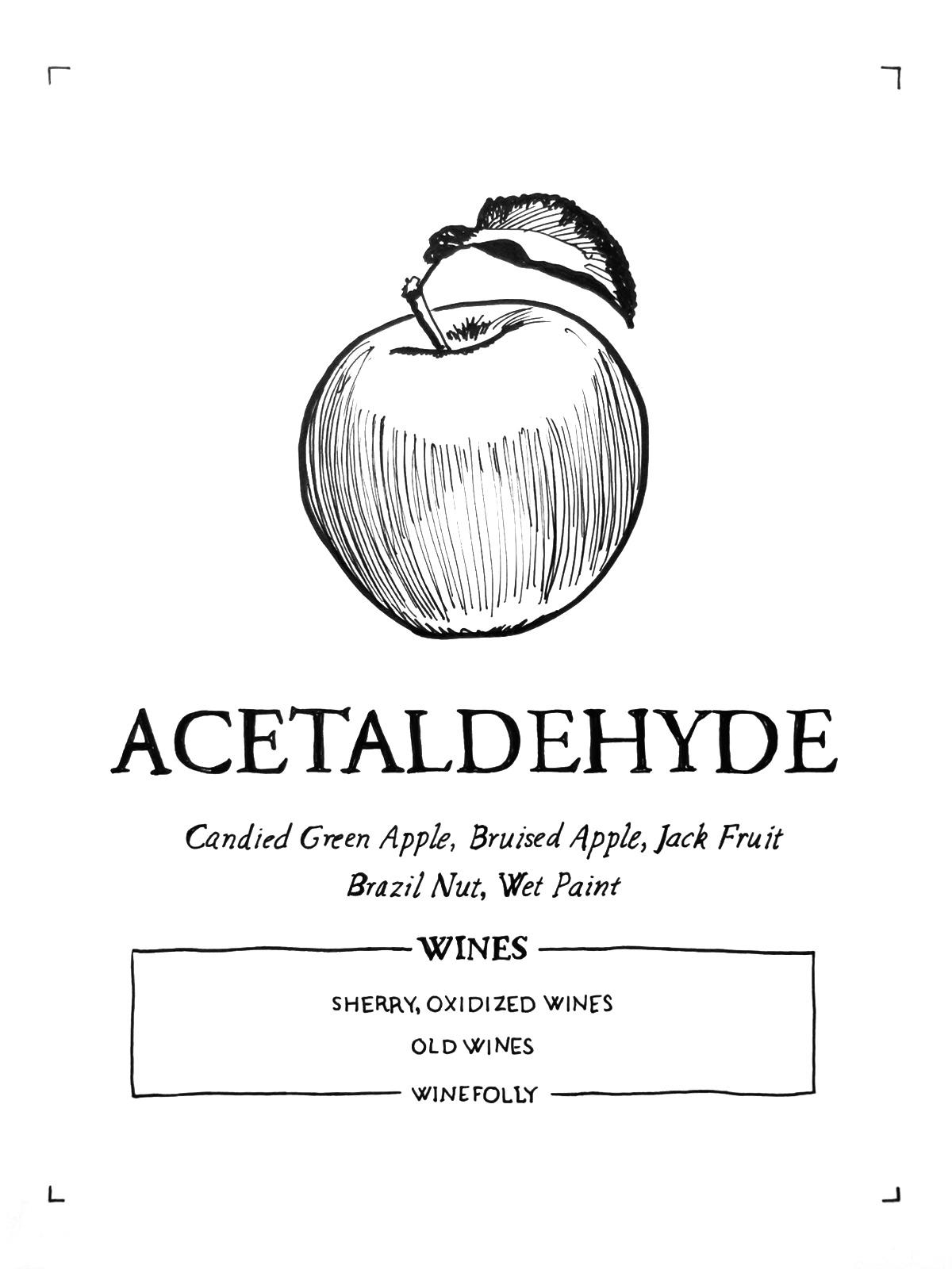 acetaldehyde-in-wine-folly-illustration