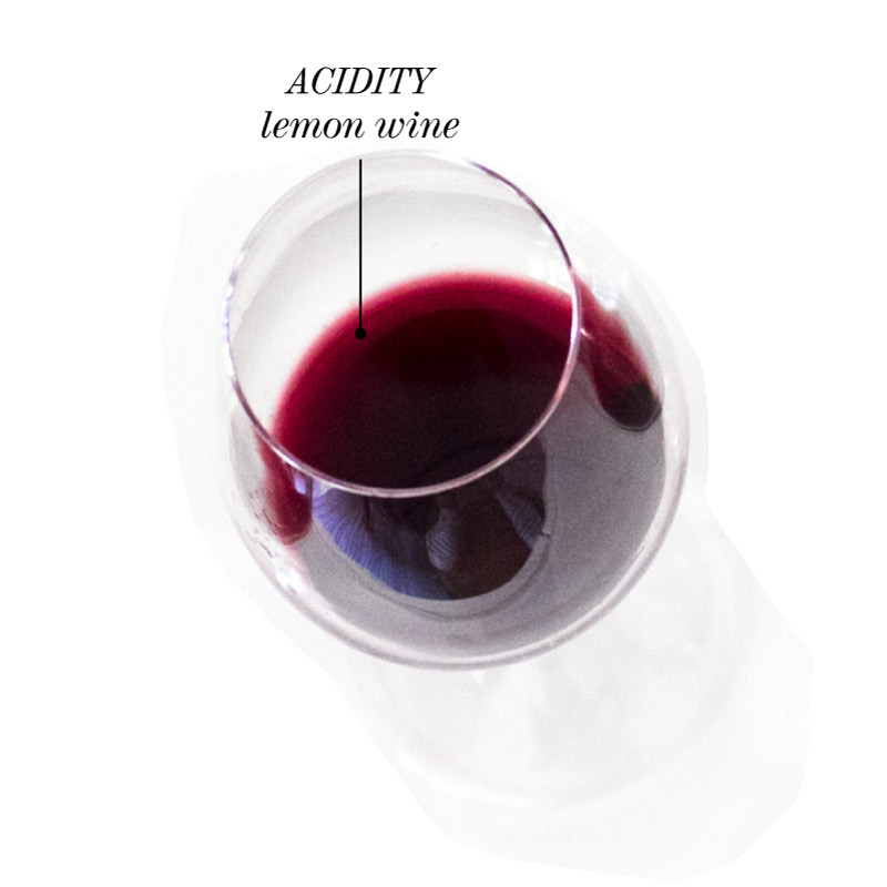 acidity-lemon-wine