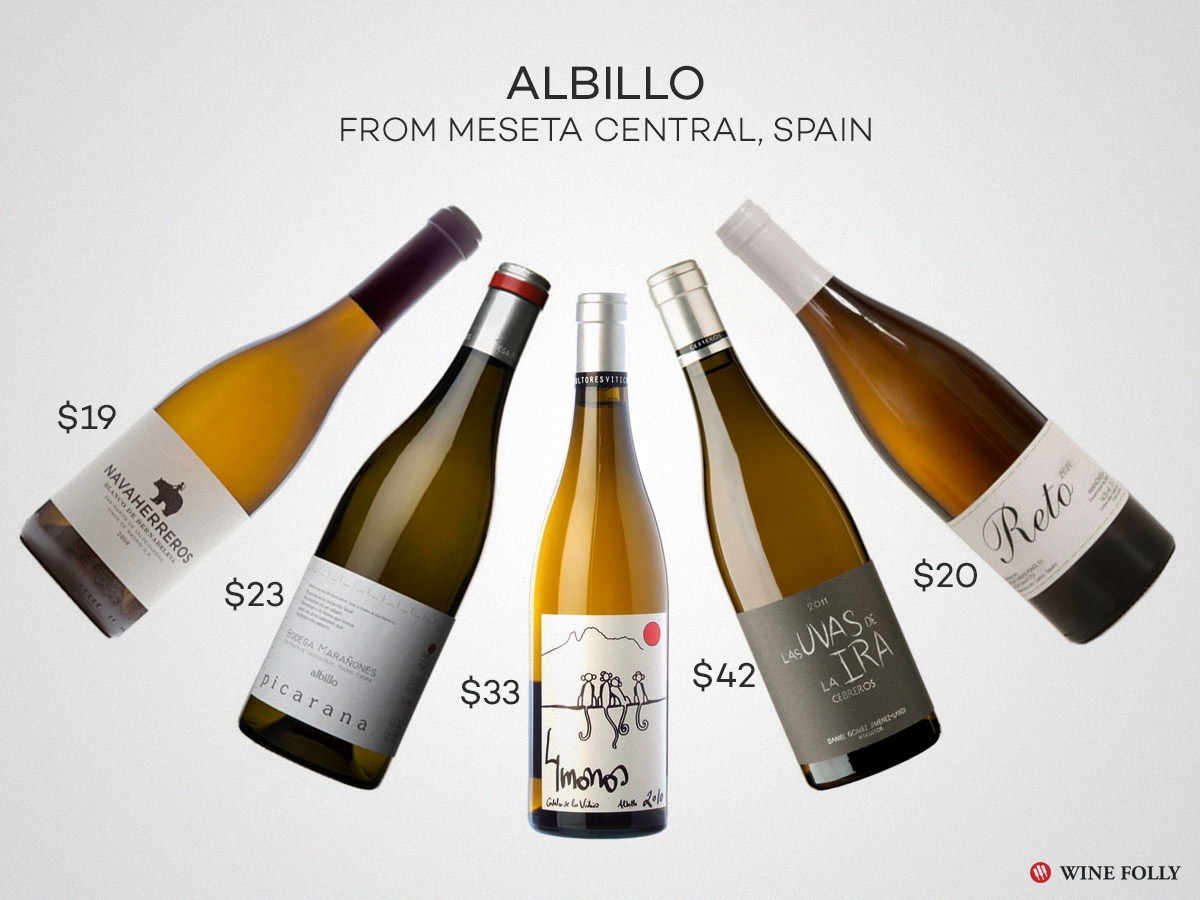 Best Albillo Wines to Seek Out for Fall