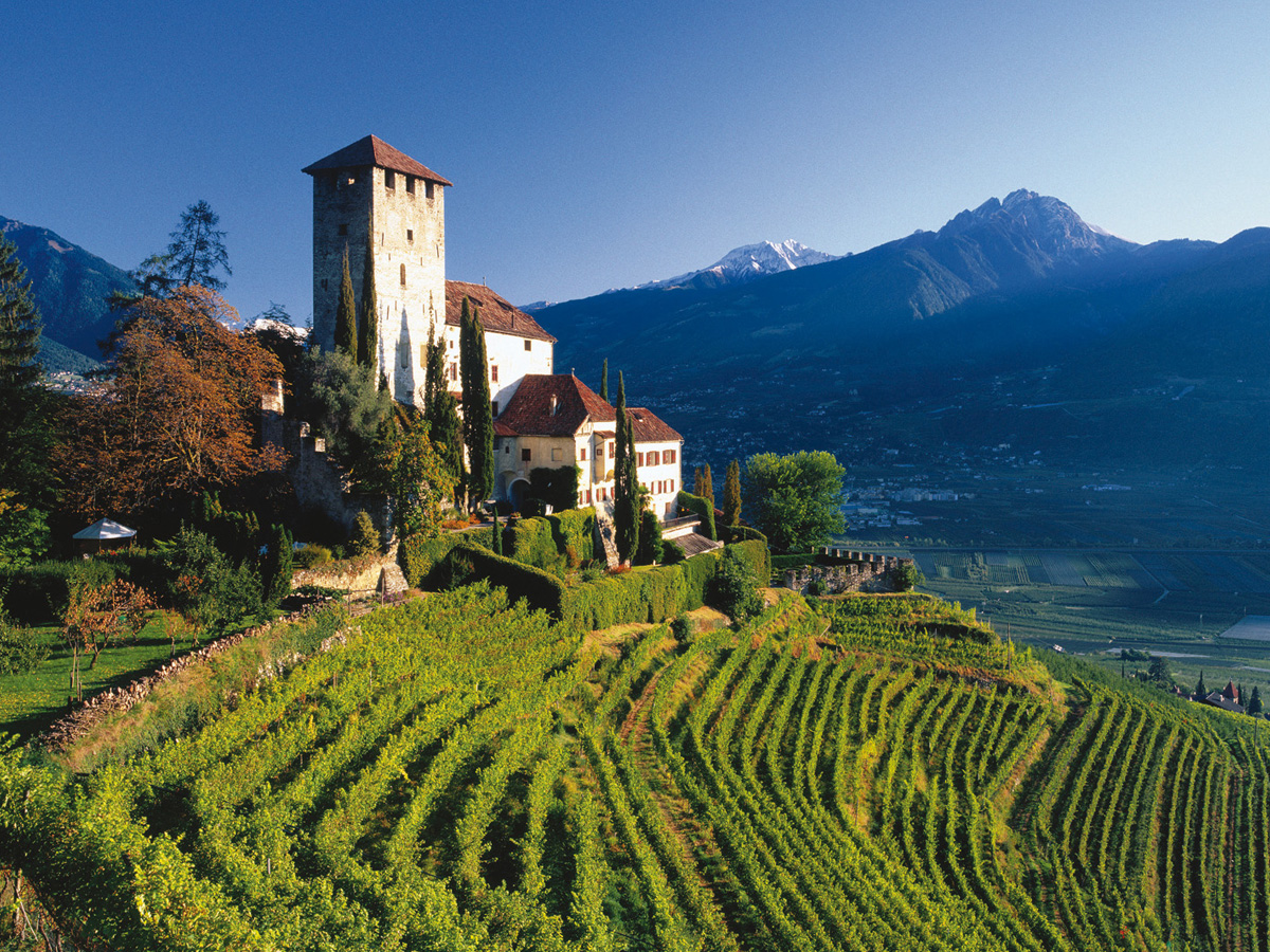 Alto Adige is known for the best Pinot Grigio