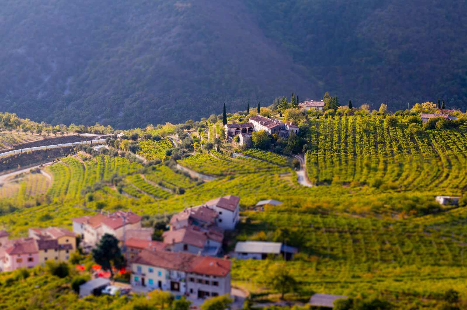 Amarone Wine Region by Ryan Opaz of Catavino.net