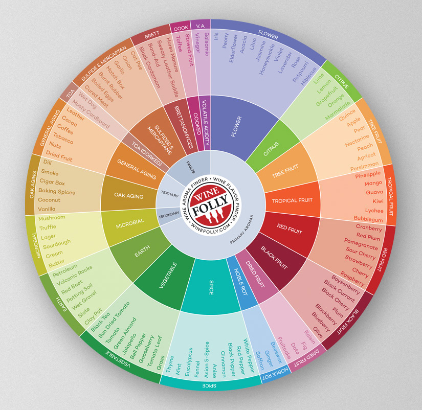 picture about Star Wheel Printable titled Current Wine Style Wheel with 100+ Flavors Wine Folly