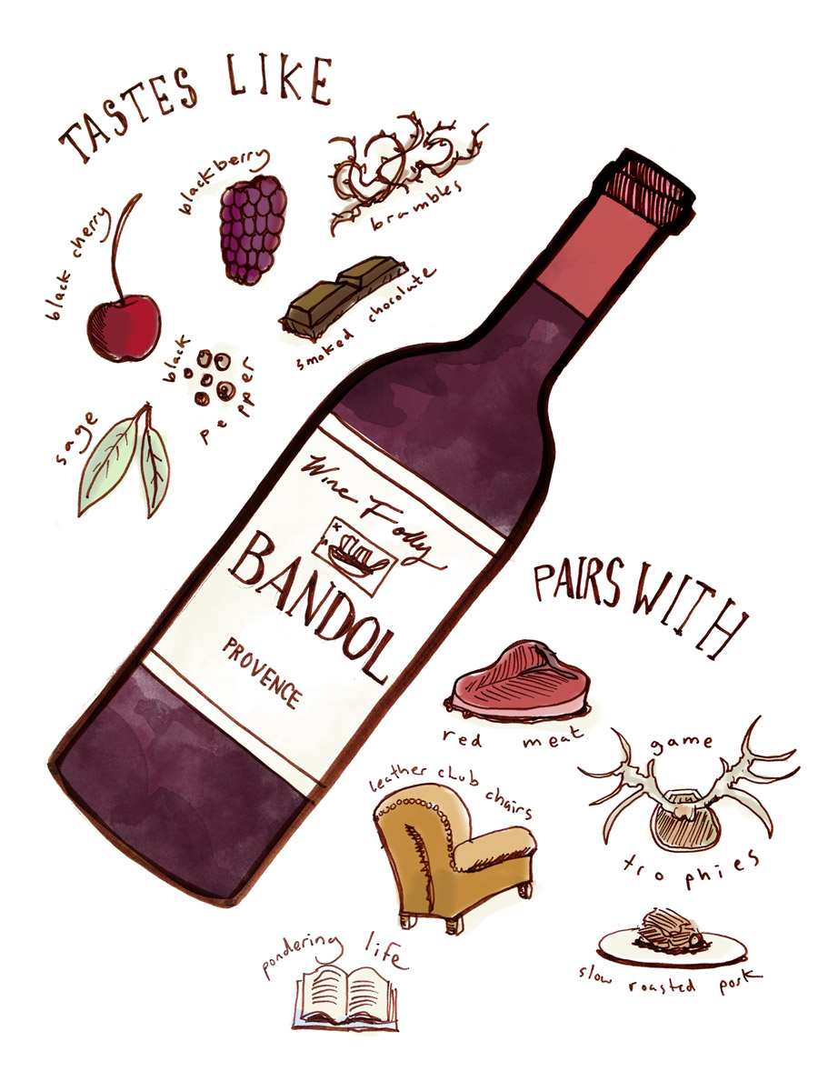 Bandol Mourvedre wine taste profile from Provence illustration by Wine Folly