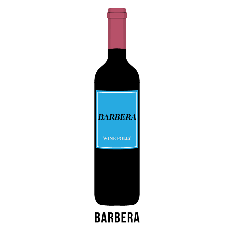 barbera-wine-bottle-folly