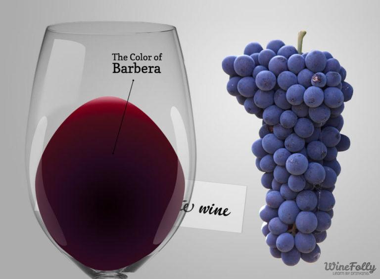 barbera-wine-in-glass-grapes-winefolly