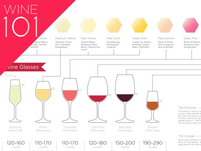 basic-wine-guide-for-beginners