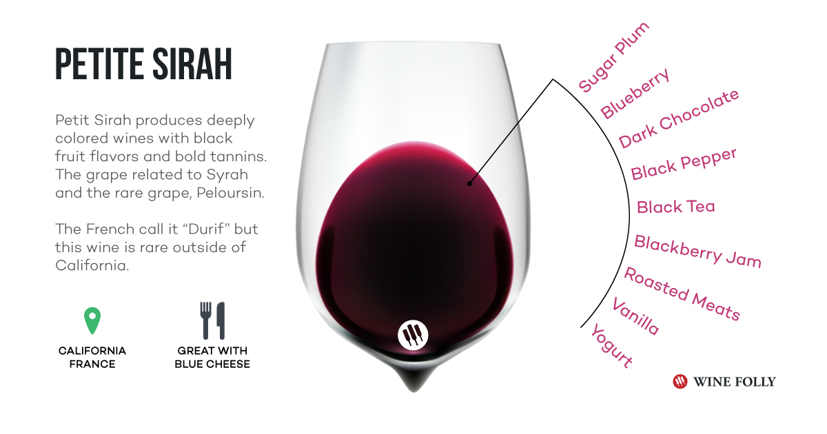 Petite Sirah wine infographic tasting notes - Wine Folly
