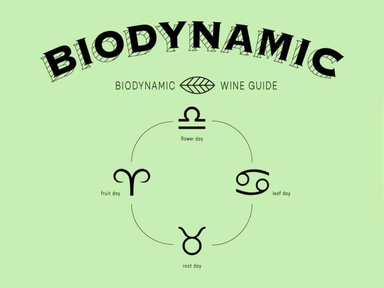 biodynamic-wine-guide-folly