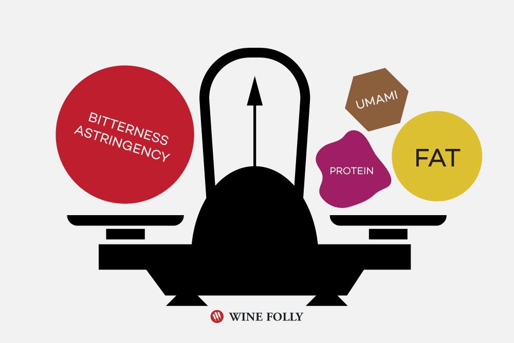 bitter-umami-fat-protein-pairing-wine