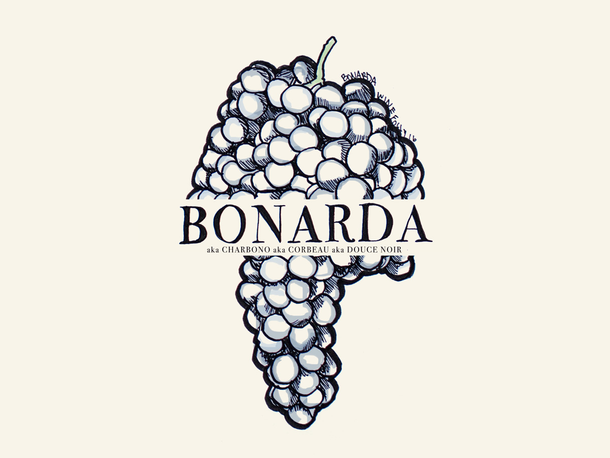 Bonarda (aka Charbono, Corbeau, Douce Noir) wine grapes illustration - Wine Folly