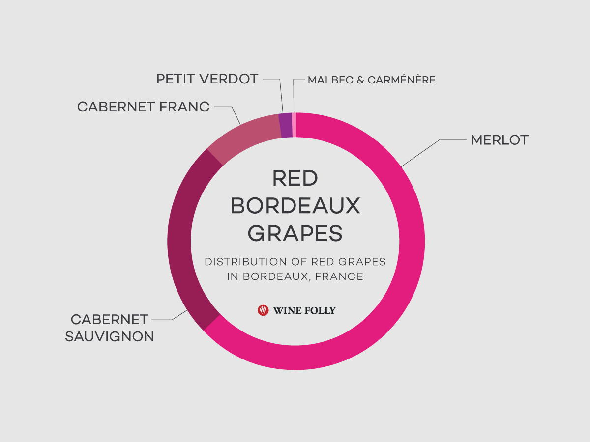 bordeaux-blends-grapes-winefolly
