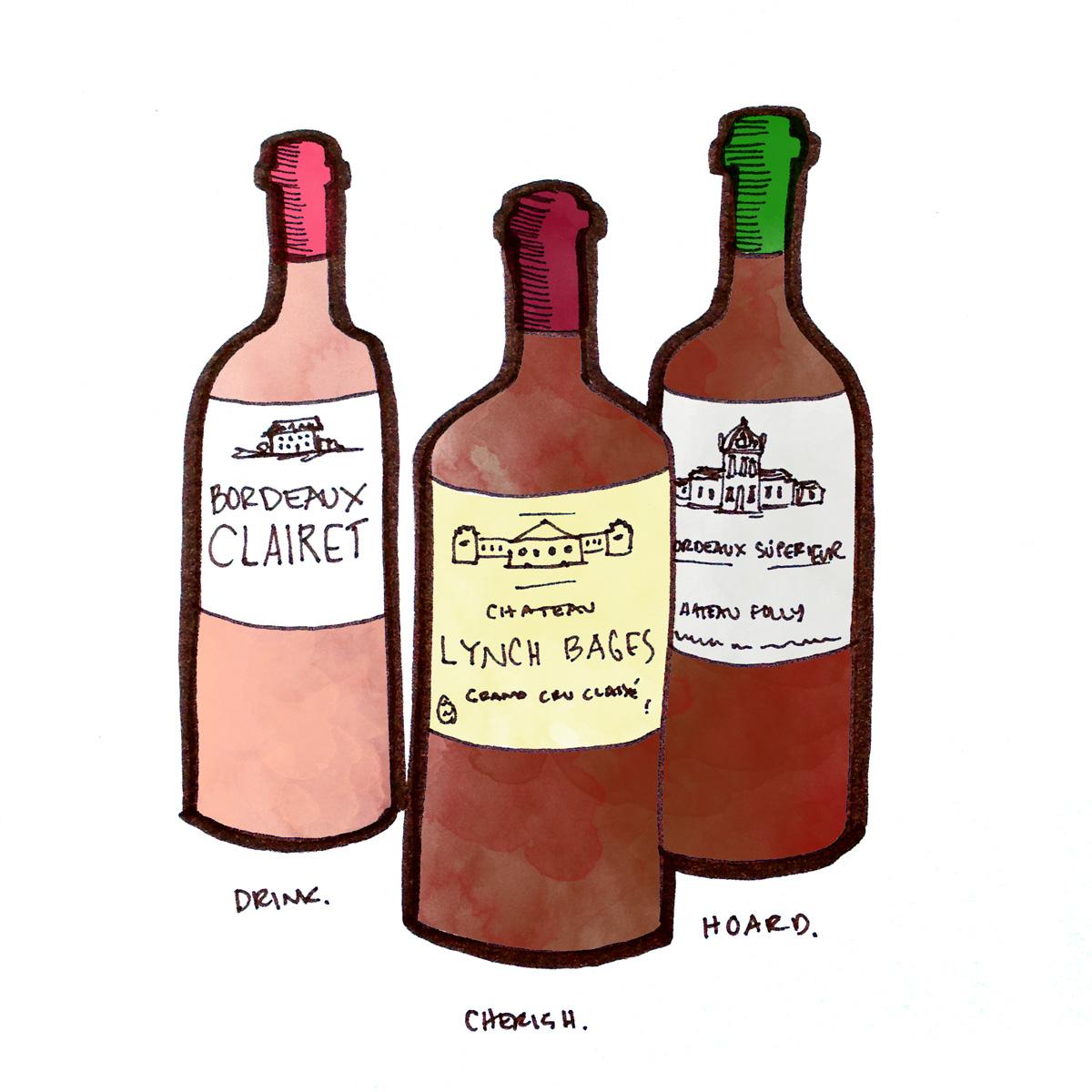 bordeaux-wine-bottles-winefolly-illustration