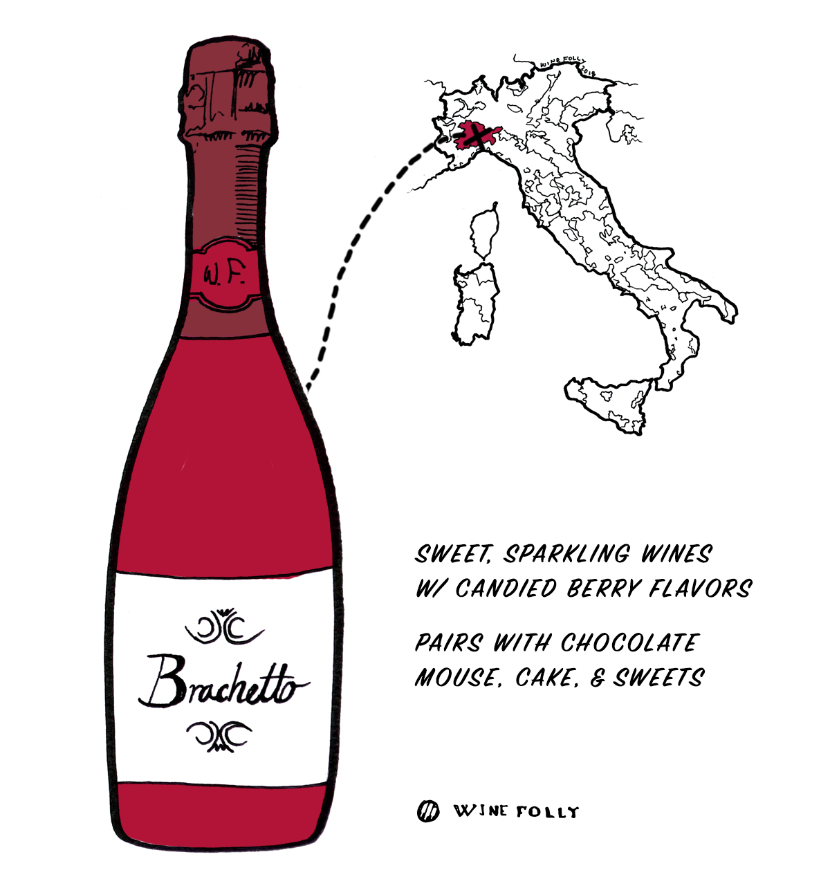 Brachetto red wine grape from Italy - Great choice for beginners into Italian wine - Illustration by Wine Folly