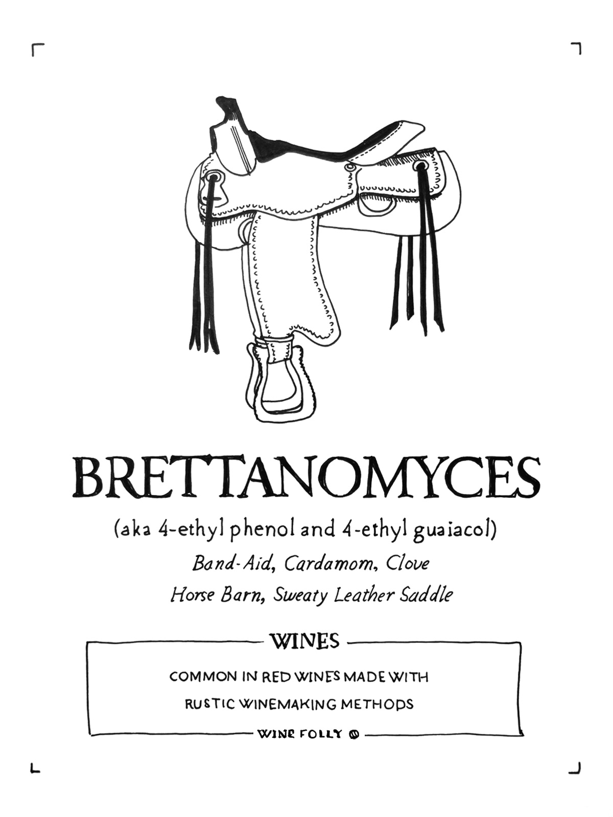 brettanomyces-wine-folly-illustration