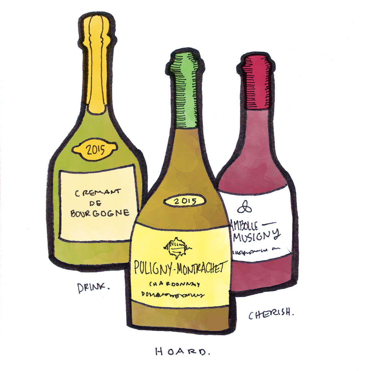 burgundy-wine-bottles-illustration-winefolly