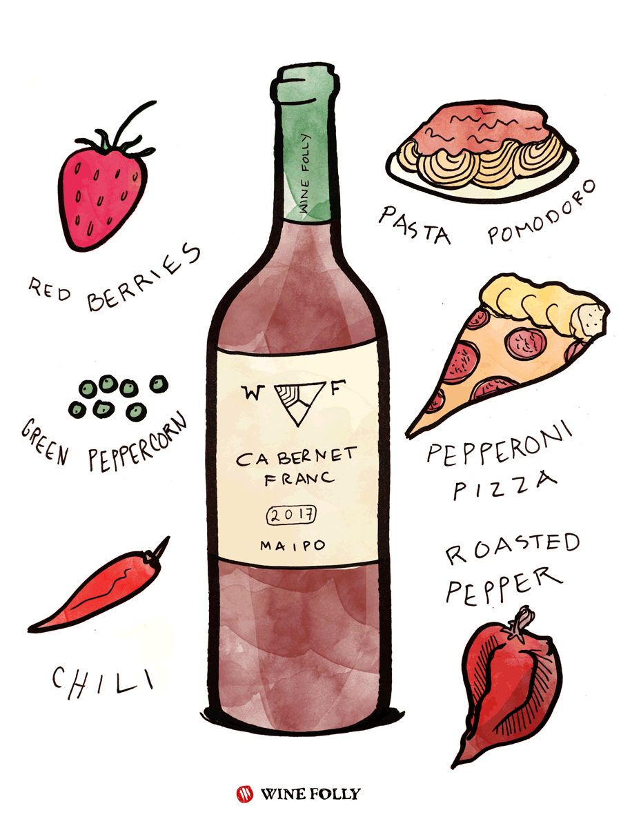 Cabernet Franc Red Wine Taste & Food Pairing Illustration by Wine Folly