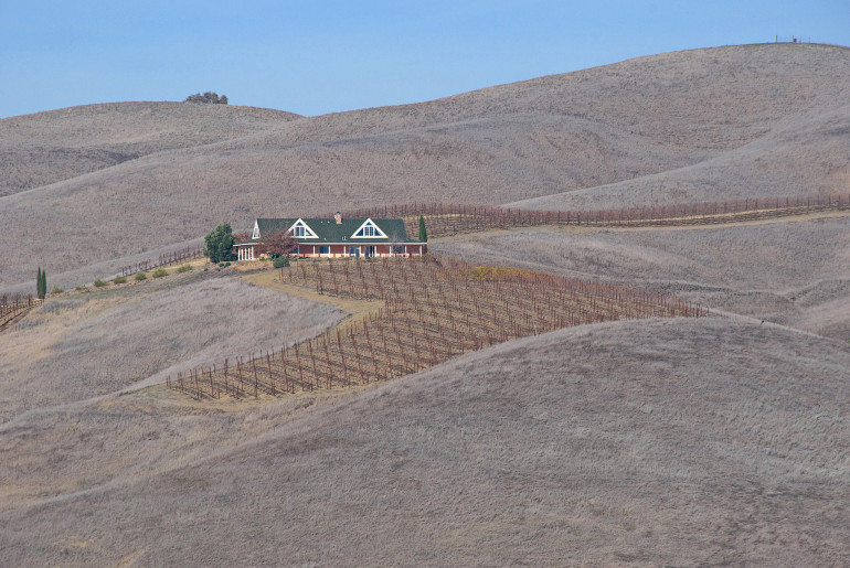 Drought in Californias vineyards by John Weiss