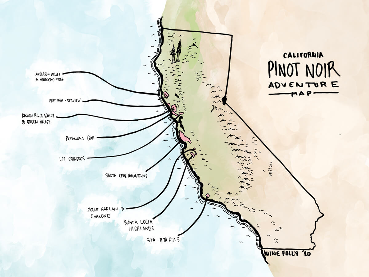 california-pinot-noir-map-winefolly-illustration