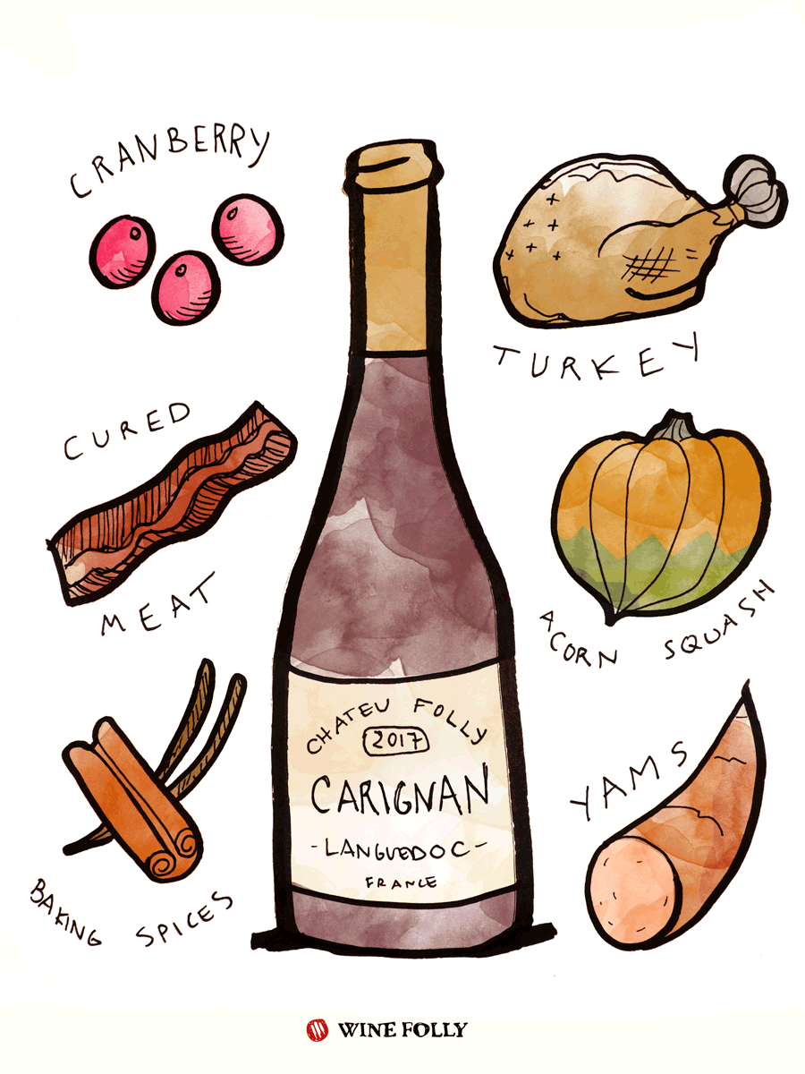 Carignan Red Wine Taste & Food Pairing Illustration by Wine Folly