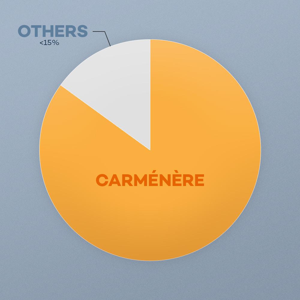 carmenere-blend-chile