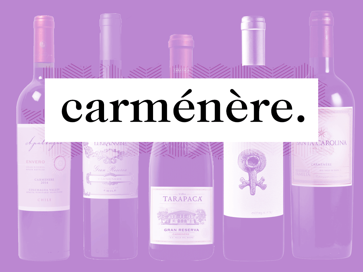 carmenere-cheap-wines-chile-red-wine-folly