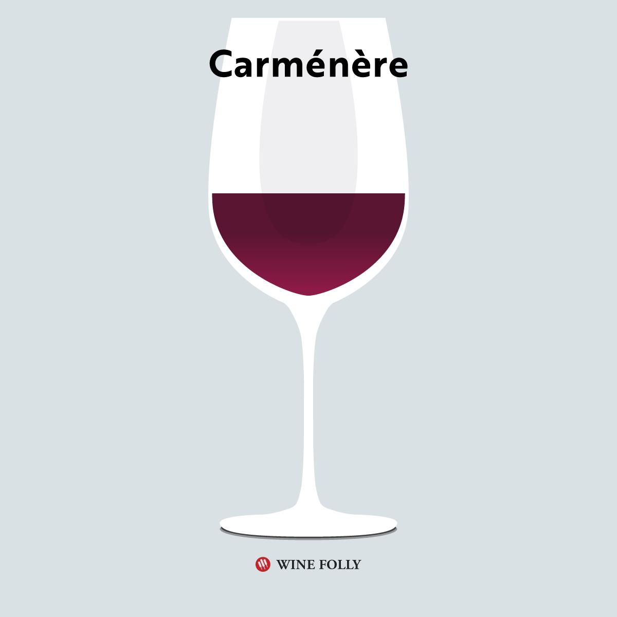 Carmenere in a glass - illustration by Wine Folly