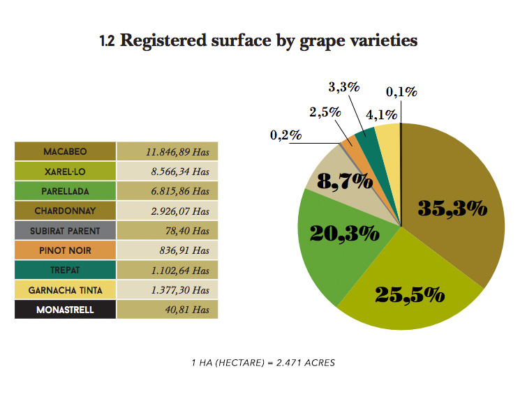 cava-grape-varieties-blend