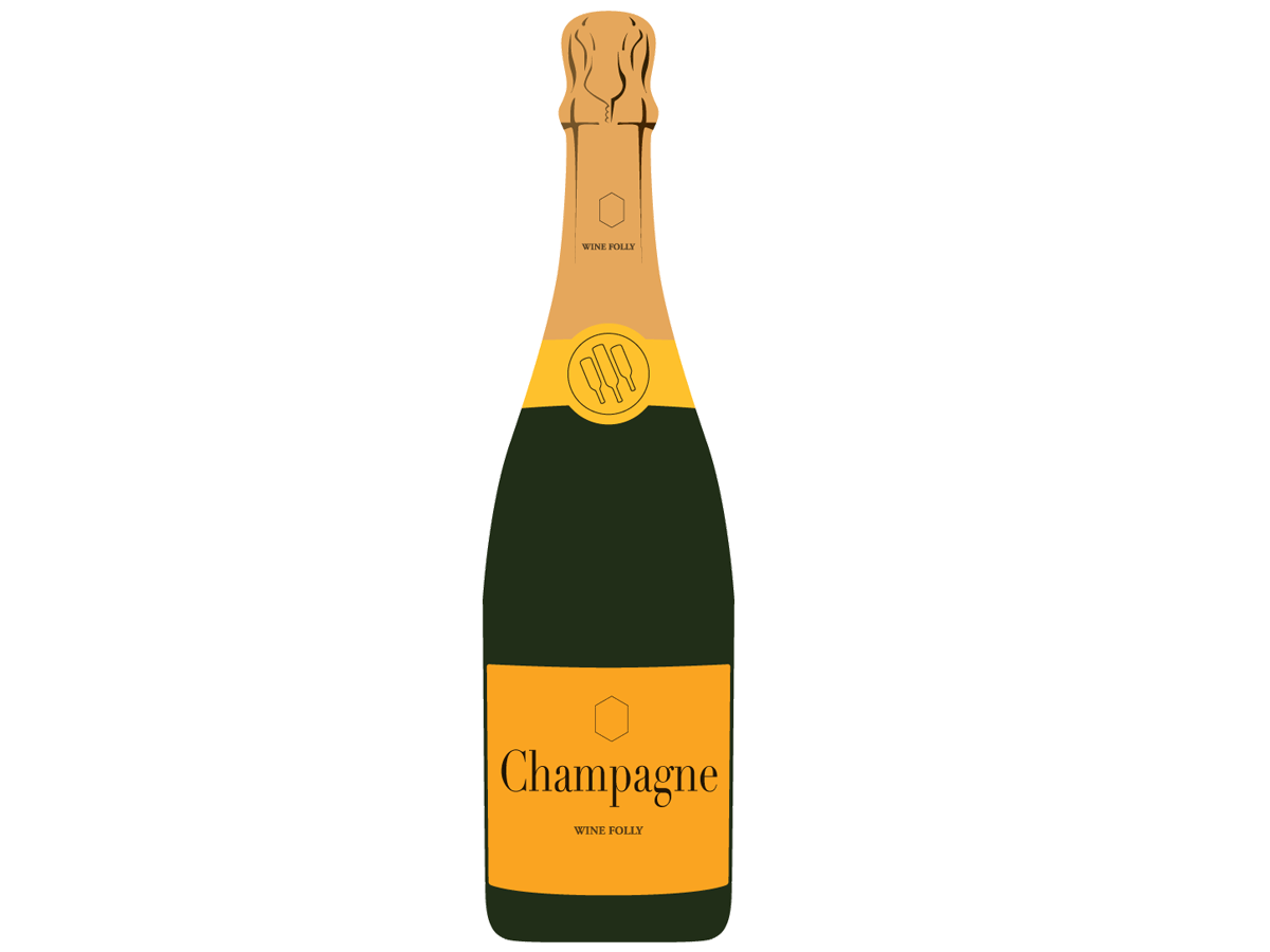 Champagne bottle gold label illustration by Wine Folly