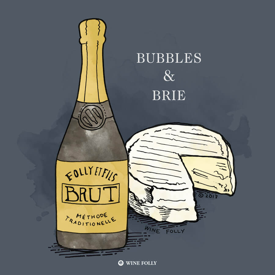 champagne-brie-cheese-pairing-illustration