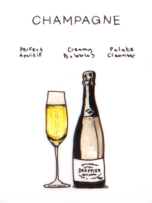 champagne-illustration